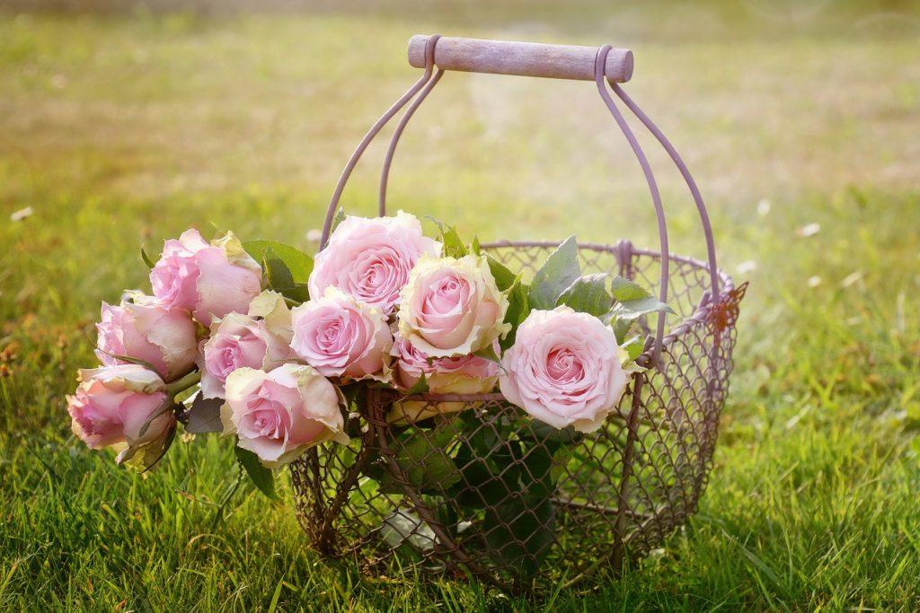 olio di rosa damascena